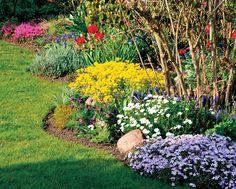 Na jarní zahradě nemusejí kvést pouze okrasné cibuloviny. Zjara rozkvétají i vděčné trvalky, kterým se daří na slunných místech.