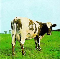 Pink Floyd - Atom Heart Mother by Storm Thorgerson | Hipgnosis