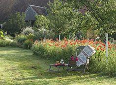Jardin sauvage en été - C. Hochet - Rustica - Le Bois Pinard - Marie Marcat