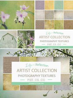 Artist Texture Collection Bundle II