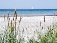 Dueodde - Bornholms schönster Sandstrand an der Südspitze der Insel. #dueodde #strand #ostsee #bornholm #insel #dänemark Baltic Sea, Skagen, Danish, Places To See, Seaside, Scandinavian, Beach, Island, Vacation