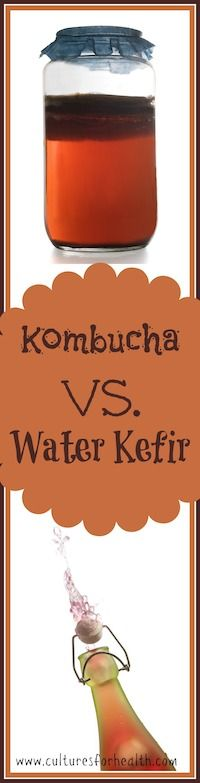 Water Kefir vs. Kombucha-  What is the difference between kombucha and water kefir? Are there benefits of one over the other? Should you drink both?