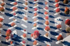 Squint to See: Almost-Abstract Aerial Photography Series