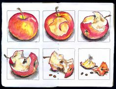 Sketchbook Skool Bootkamp process - process of time decay of an apple over a period of time Natural Forms Gcse, Natural Form Art, A Level Art Sketchbook, Sketchbook Layout, Sketchbook Ideas, Decay Art, Growth And Decay, Observational Drawing, School Art Projects