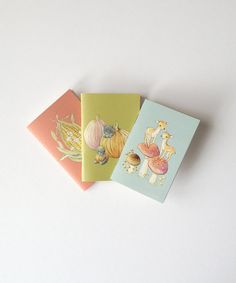 set of 3 Miniature Journal  Pocket Animals