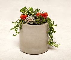 He encontrado este interesante anuncio de Etsy en https://www.etsy.com/es/listing/225277690/concrete-planter-concrete-jar-concrete