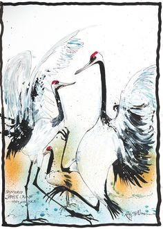 Ralph Steadman's birds on the edge of extinction – in pictures | Books | The Guardian