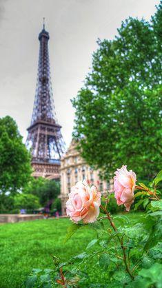 Ook in #Parijs is het lente!