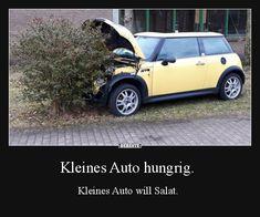 Kleines Auto hungrig.   Lustige Bilder, Sprüche, Witze, echt lustig