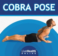 Cobra is an excellent pose to break into when you're craving an immediate sense of stretch satisfaction. This pose increases spine strength and flexibility, improves posture and digestion, and can even help relieve menstrual problems and migraines. Cobra Pose, Improve Posture, Yoga Flow, Migraine, Yoga Poses, Health Benefits, Flexibility, Strength, Back Walkover