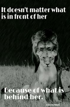 I love to think if Jesus, the Lion of Judea, standing behind me, having my back always, being my protector and my strength! I absolutely love this picture! Great Quotes, Me Quotes, Inspirational Quotes, Lion Quotes, Got Your Back Quotes, King Queen Quotes, Love My Husband Quotes, Fierce Quotes, I Got Your Back