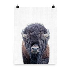 Cute Animal Wall Art Prints for a Nursery, Kids Room, or to add to your home decor!  Come visit!