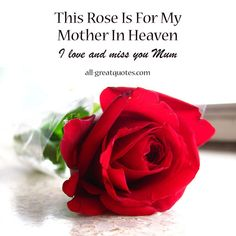 This Rose Is For My Mother In Heaven. I love and miss you Mum