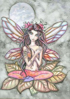 Fairy Art: Catherine Rose by Artist Molly Harrison Magical Creatures, Fantasy Creatures, Fairy Dust, Fairy Tales, Dragons, Fable, Elves And Fairies, Fairy Pictures, Artist Portfolio