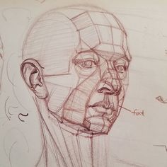 Head structure demo in a student's pad