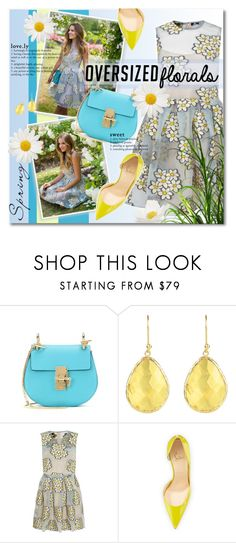 """""""Daisy"""" by petri5 ❤ liked on Polyvore featuring Chloé, RED Valentino and Christian Louboutin"""