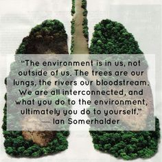 #quote by Ian Somerholder! What do you think? #environment #outdoors #trees #OnlyHonest