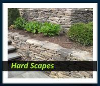 We help keep the grass greener! Fort Mill, Irrigation, Green Grass, Stepping Stones, Landscaping, Sidewalk, Deep, Outdoor Decor, Stair Risers
