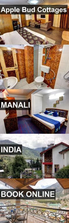 essay on my favourite holiday destination manali
