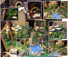 Dinosaur Small World Play (from Stimulating Learning with Rachel) Dinosaurs Preschool, Dinosaur Activities, Activities For Kids, Nursery Activities, Sensory Activities, Dinosaur Garden, Dinosaur Play, Dinosaur Small World, Small World Play