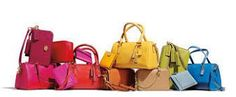 Top brand handbags - Here's a list of the top most expensive handbags in the world. This list has more expensive purses than more handbags brands Coach Handbags, Coach Purses, Purses And Handbags, Coach Wallet, Replica Handbags, Coach Bags Sale, Bag Sale, Most Expensive Handbags, Leather Handbags Online