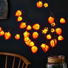 Red Chinese Lantern Light-Up Arrangement by The Light Garden, $28 !!   #zulilyfinds