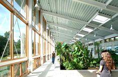 #green #livingbuilding