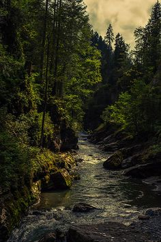 We live in a beautiful world. Mountain Landscape, Nature Pictures, Beautiful World, Wonders Of The World, Mother Nature, Places To Go, Waterfall, Earth, River