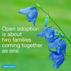 """Open adoption is about two families coming together as one."" #openadoption #family"