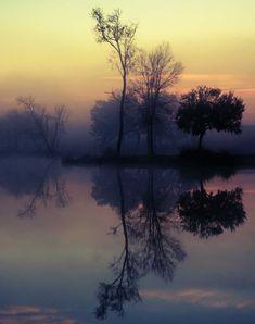 Foggy Lake Sunrise, Nature Photography