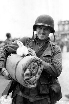 Animals to melt the hearts of the soldiers on the battlefield