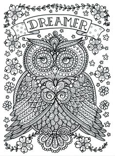 Poster to Color Owl Dreamer Coloring Poster Large 11 x 14 size You will receive one 11 x 14 poster size black and white Poster ready for you to
