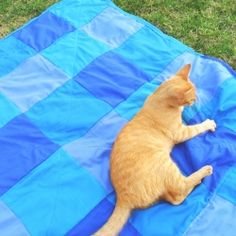 Make this super easy quilty-ish bedspread that even your cat will love! (in Spanish)