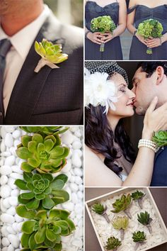 I have always loved succulents and am so excited that people are using them in beautiful wedding bouquets and settings.