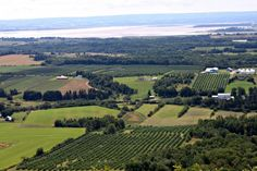The Look Off Annapolis Valley, NS Acadie, Annapolis Valley, East Coast Travel, Bridgetown, Best Places To Live, Nova Scotia, Summer Travel, Wine Country, Summer 2016