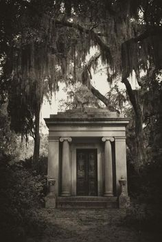 Spanish Moss-draped Tree Branches Hang Over a Mausoleum-Amy & Al White & Petteway-Photographic Print