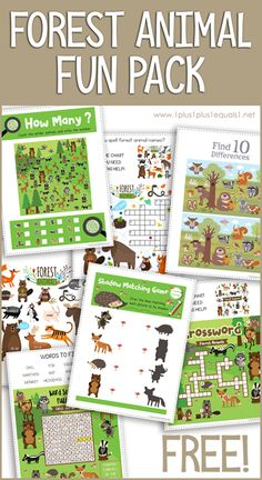 Forest Animal Fun Pack - My best shares Animal Activities For Kids, Kindergarten Activities, Animals For Kids, Toddler Activities, Forest Animals, Woodland Animals, Nocturnal Animals, Woodland Creatures, Theme Forest