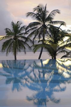 Pool in paradise ... I'd have to pinch myself ... and maybe twice ... if I were here!