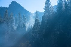 Yosemite ТЗ шт the foggy morning