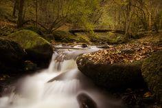 Ruisseau du Tolerme Photo © Laurent Delfraissy.