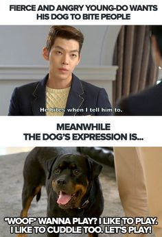 K-drama meme, humour and parody to brighten your day. We troll the drama coz we love it. Korean Actors, Korean Dramas, Dog Expressions, Park Hyung, Choi Jin, Kang Min Hyuk, Funny Memes, Hilarious, Kdrama Memes