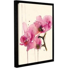 ArtWall Karin Johannesson Orchids II Gallery-Wrapped Floater-Framed Canvas, Size: 18 x 24, Pink