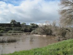 The Two Seasons of the Salinas River in Paso Robles Salinas River, See It, Two By Two, March, Country Roads, Seasons, Explore, Water, Outdoor