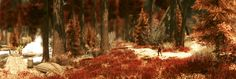 enderal -  in red