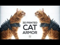 You can now 3D print your cat a badass suit of armor http://amapnow.com http://my.gear.host.com http://needava.com http://renekamstra.com Maybe something for 3D Printer Chat?