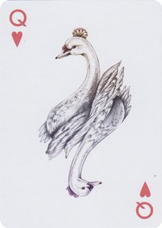 "This beautiful deck of playing cards is inspired by birds from all over the world. The name comes from the proper scientific classification for birds. ""Aves"" is also Latin and Spanish for ""Birds. Hearts Playing Cards, Playing Cards Art, Vintage Playing Cards, House Of Cards, Deck Of Cards, Printable Playing Cards, Card Tattoo, Queen Of Hearts, Grafik Design"