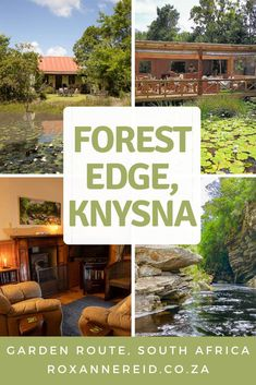 Forest Edge self-catering accommodation in Knysna - Roxanne Reid