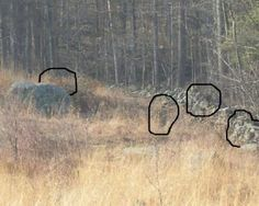"by Ruth (from Pa.) ""If you ever go to the Triangular Field at the Gettysburg Battlefield always remember ""They Will Be Watching You"". Even when you think you're alone...You're Not!!! You will not see them, but you may hear them, smell them, have your hair pulled by them or not even notice them at all. They can take form in many shapes, and sometimes hide in objects not being seen by the naked eye. But if you're lucky, you may capture their presence on a photo. The spirits of many soldiers…"