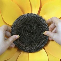 SVG Paper Flower, Sunflower Template for Silhouette or Cricut Cutting Machines Giant Paper Flowers, Felt Flowers, Metal Flowers, Glue Crafts, Paper Crafts, Sunflower Template, Sunflower Party, Paper Sunflowers, Flower Wall Backdrop