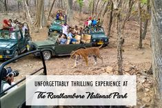 As I entered the forest region I felt deeply attracted by the nature's magnificence. Ranthambore National Park at Sawai Madhopur is a spectacular place. Before I Die, Business Travel, National Parks, Adventure, Places, Nature, Image, Bucket, Journey